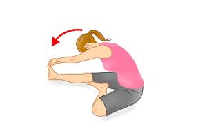 前屈ストレッチ解説2 骨盤 腰痛