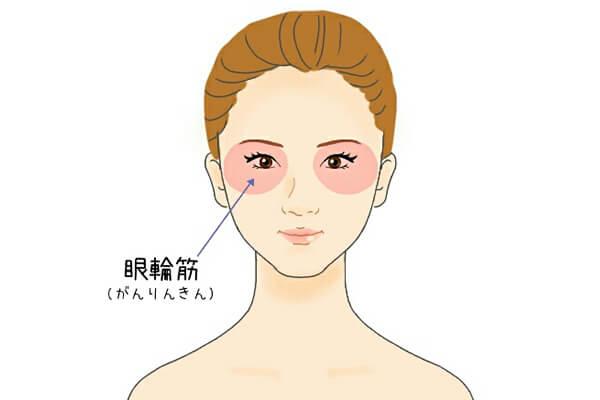 眼輪筋 顔ヨガ やり方