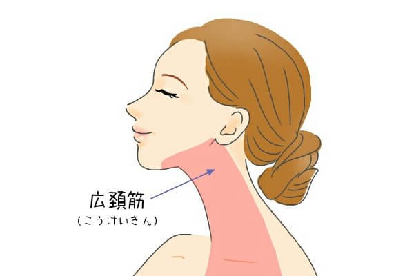 広頚筋 顔ヨガ やり方